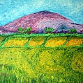 Paul Morgan - Fields Around Knocklayde