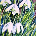 Trudi Doyle - First Snowdrops of...
