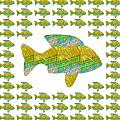 Navin Joshi - Fish poisson  exotic...
