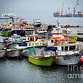 Rene Triay Photography - Fishing Fleet of the...