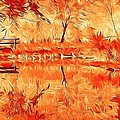 Dan Marquart - Flaming Fall Reflections