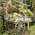 Thomas Woolworth - Floral Garden Cart