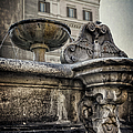 Joan Carroll - Fountain of Santa Maria...
