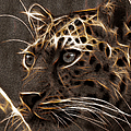 EricaMaxine  Price - FRACTAL BEINGS  7-Cheetah