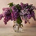 Jaroslaw Blaminsky - Fresh lilac in glass...