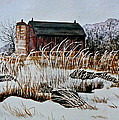 Carolyn Rosenberger - Frosted Weeds