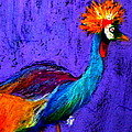 Sue Jacobi - Funky Grey Crowned Crane...