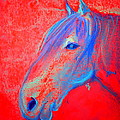 Sue Jacobi - Funky Handsome Horse Blue