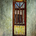 Janice Rae Pariza - Ghost In The Window