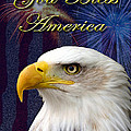 Jeanette Kabat - God Bless America Eagle