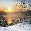 Vesna Martinjak - Golden lake sunrise