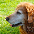 Claudia  Ellis - Loyal Friend - Golden...