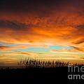 Margie Amberge - Golden Sunset at the...