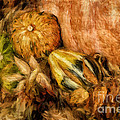 Lois Bryan - Gourds and Leaves Of...