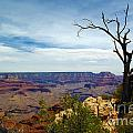 Debra Thompson - Grand Canyon View