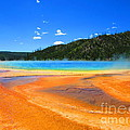 C Lythgoe - Grand Prismatic Springs