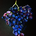 Alena Rumak - Grapes 1
