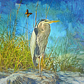 L Wright - Great Blue Heron