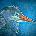 Linda Nielsen - Great Blue Heron