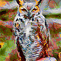 Ernie Echols - Great Horned Owl Fun