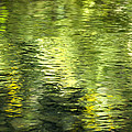Christina Rollo - Green Abstract Water...