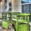 Delilah Downs - Green Bench and...