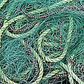 Barbara Griffin - Green Nets and Ropes -...