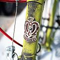 Tanya Harrison - Green Nishiki Bicycle