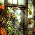 Mike Savad - Greenhouse - The door to...