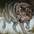 Margaret Stockdale - Grey Wolf On The Move
