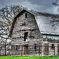 Lisa Moore - Gypsy Queen Farms Barn II
