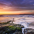 English Landscapes - Hanover Point Sunset #3