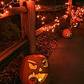 Donna Kennedy - Happy Halloween