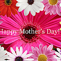 Kay Novy - Happy Mothers Day