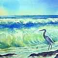 Thomas Habermann - Heron by the Ocean