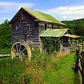 Karen Wiles - Historical Whites Mill