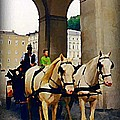 John Malone - Horse and Carriage in...