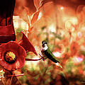 EricaMaxine  Price - Hummingbird in the...