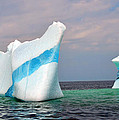 Lisa  Phillips - Iceberg off the Coast of...