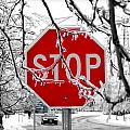 Valentino Visentini - Iced Stop Sign