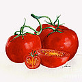 Nan Wright - Illustration of Red Ripe...
