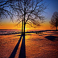 Phil Koch - Into the Shadows of Light
