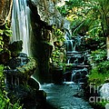 Craig Wood - Island Waterfall
