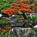 Todd and candice Dailey - Japanese Garden 2
