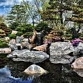 Todd and candice Dailey - Japanese Garden 5