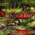 Mike Savad - Japanese Garden -...