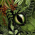 Carol Jacobs - Jungle Eye