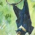 Sandra Sengstock-Miller - Just Hanging Around