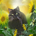 Carol Cavalaris - Kitty In The Sunflowers