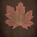 Linda Troski - Large Maple Leaf